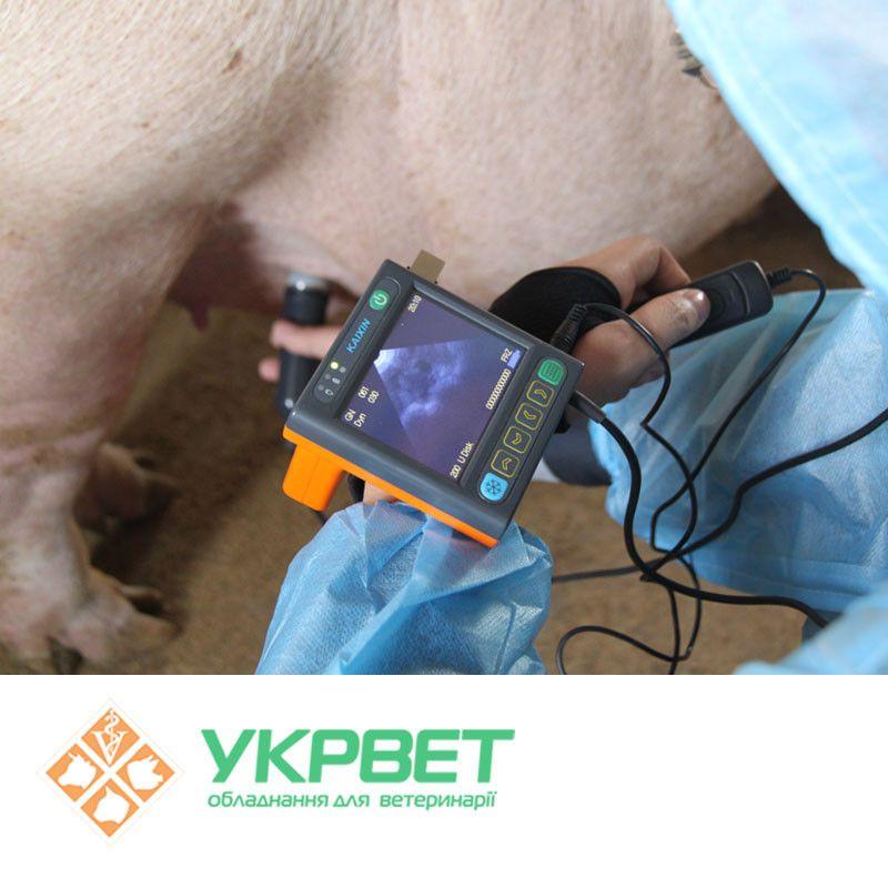 Цифровой ультразвуковой прибор MSU3 для свиней